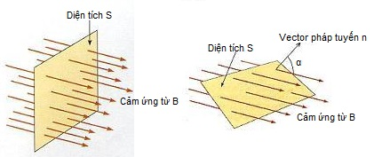 Từ thông riêng của một mạch kín phụ thuộc vào